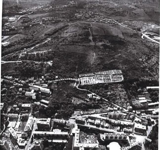 colline 1973